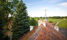 Widok z wieży klasztoru w Wojnowie